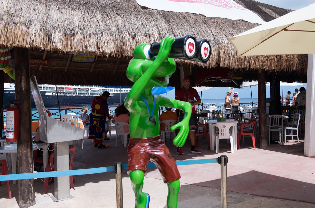 Senior Frog's in Cozumel Mexico