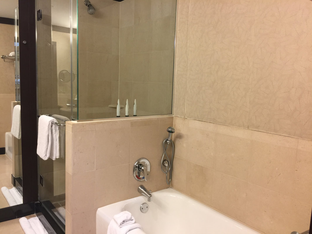 Standing shower and tub at Sofitel Philadelphia